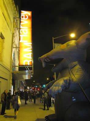 BAM - The rat strikes back